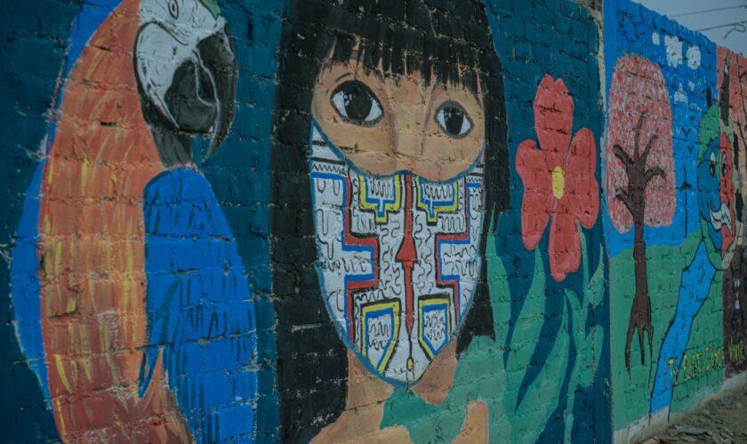 Disciplinas artísticas del Perú