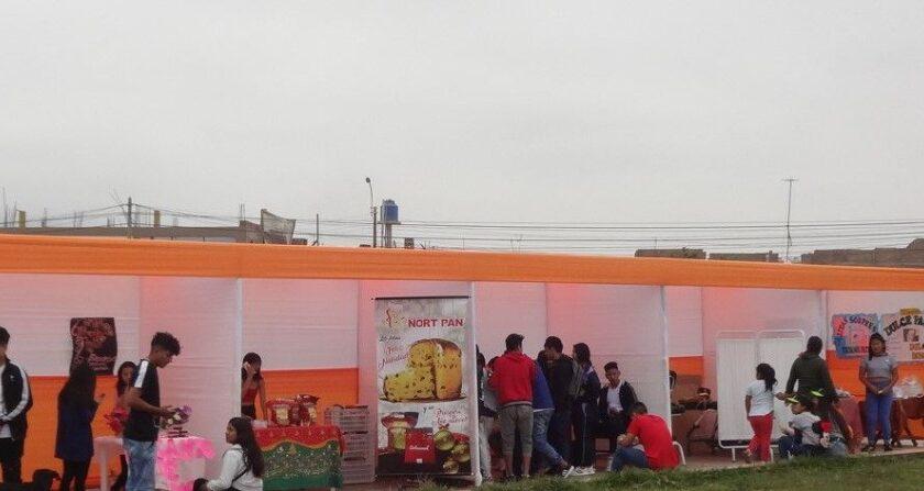 Emprendimiento Juvenil en el Perú
